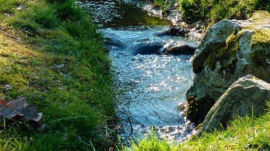 Nábřeží brněnských řek budou oživeny!