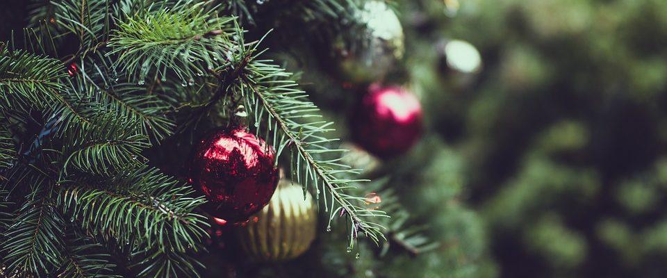 Vánoční strom Brno